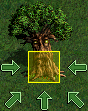 Tree of Knowledge (vs).png